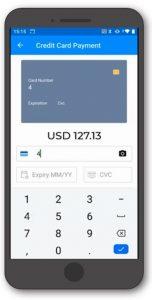 salesanywhere payment